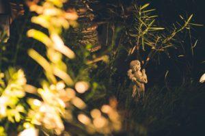Oświetlenie ogrodowe tylko z pozoru może wydawać się nieistotne
