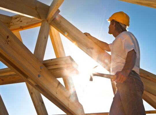 Domy drewniane: właściwości drewna, które warto znać